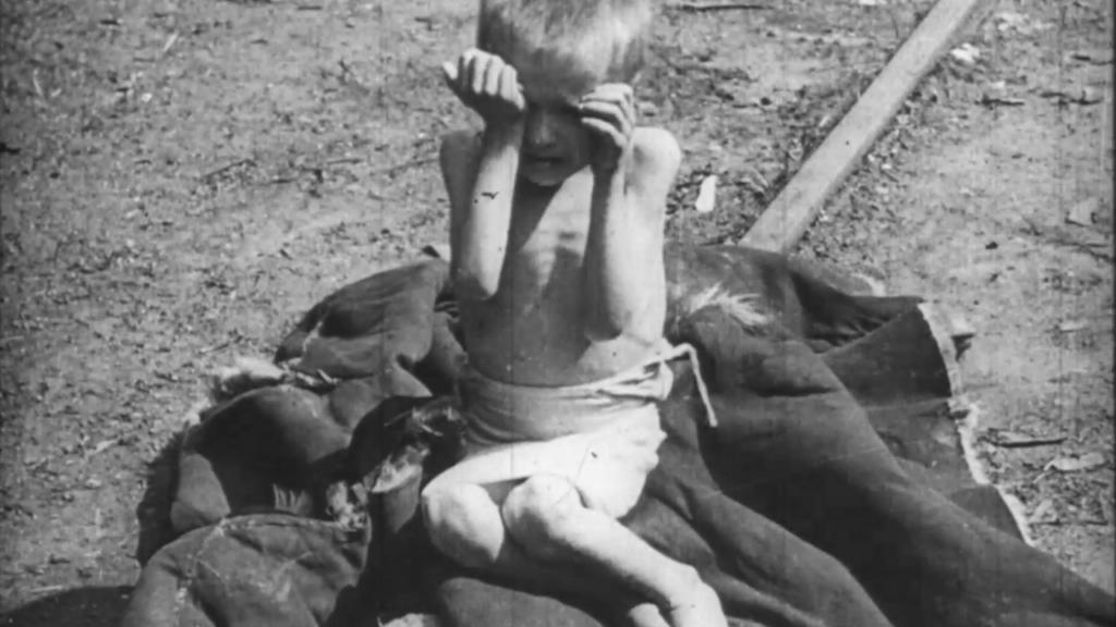 Голод в Поволжье 1921-1922. Теория голода (1)